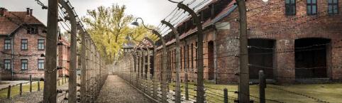 Auschwitz Challenge